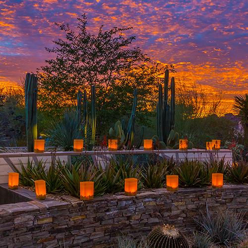 Amy James Tempe Enement Desert Botanical Gardens