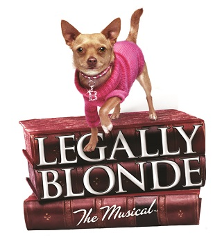 Legally Blonde The Musical with dog in pink sweater standing on books