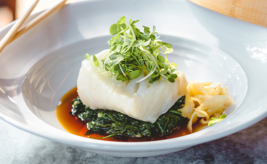 White fish on bed of greens in white plate with sauce and herbs on top