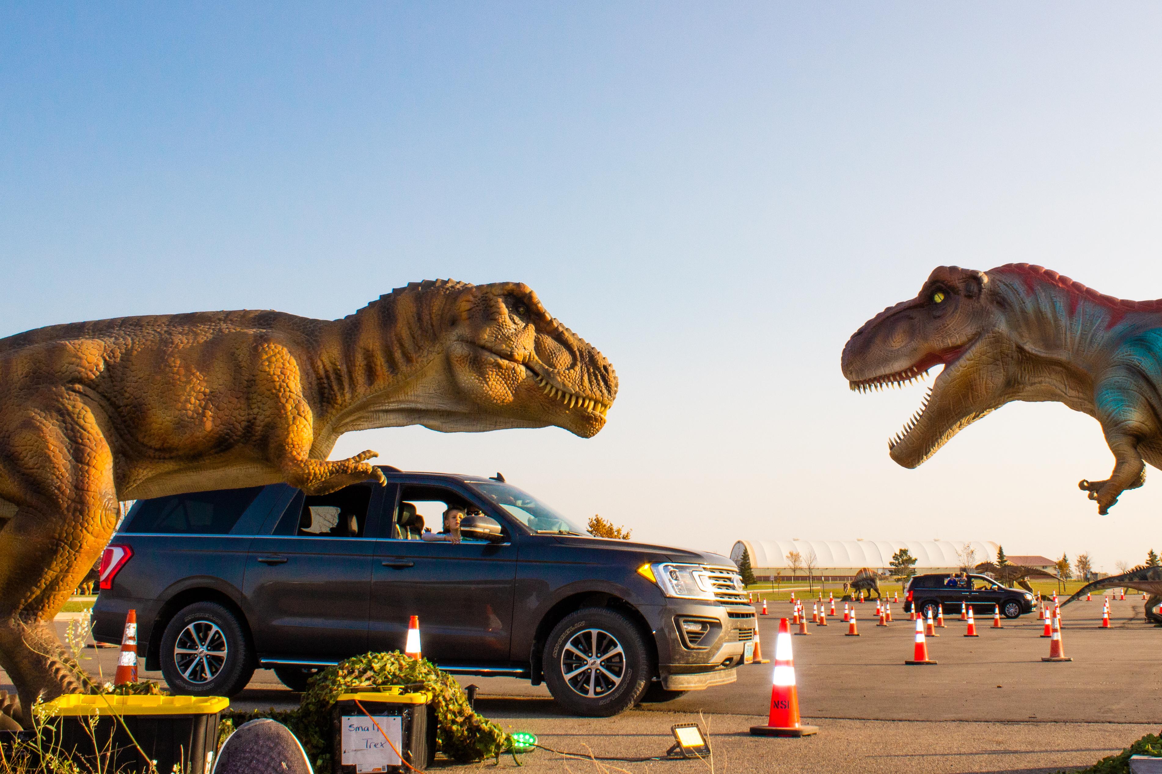 dinosaur drive through event with a van