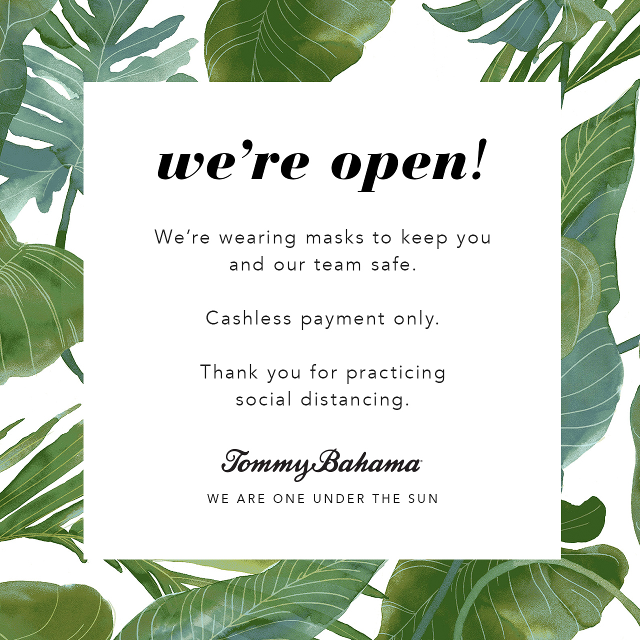 Tommy Bahama announcing their re-opening and practicing social distancing