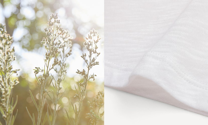 Flowers and cotton fabric to promote Splendid's tee-cycle program