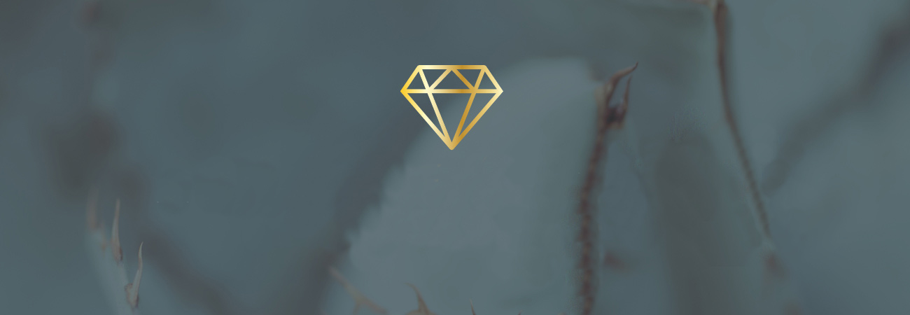 diamond logo overlaying a blurred photo of a succulent