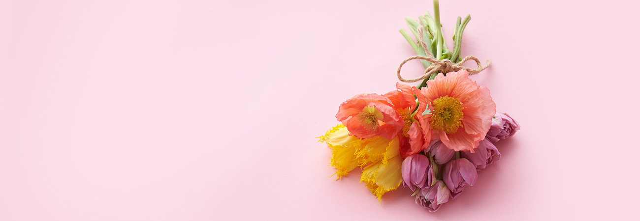 A bouquet of spring flowers on a pink background