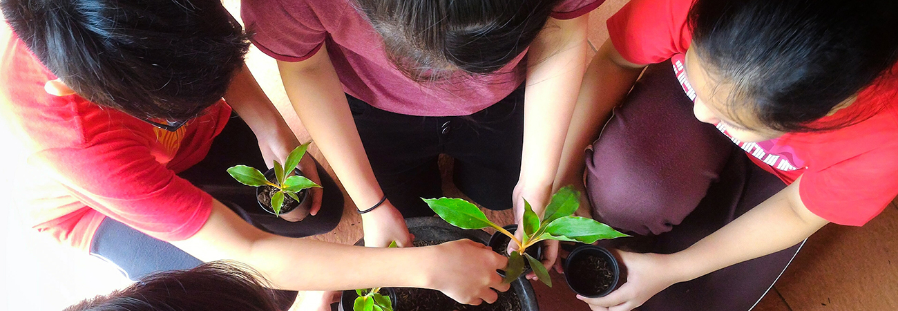 a group of kids planting seedlings