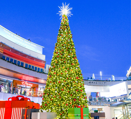 SMP iconic 50foot lit tree in center Plaza