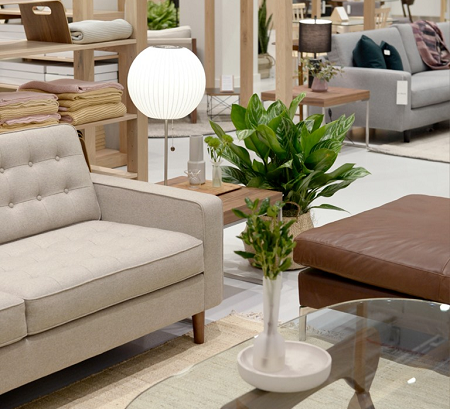 EQ3 couch, table, plant and lamp
