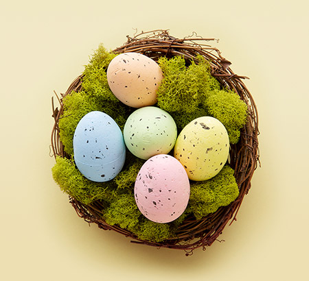 Pastel eggs in nest with moss