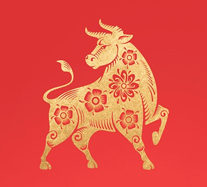 Golden Year of the Ox on a red backgroung