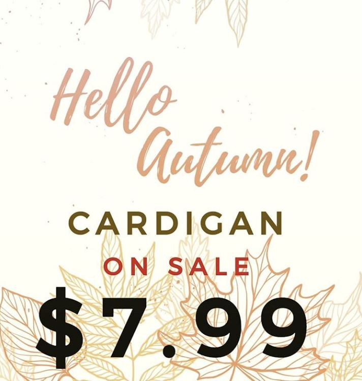 """Fall themed background with print reading, """"Hello Autumn! Cardigan on sale $7.99"""""""
