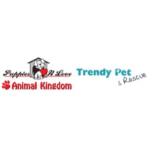 Puppies 'N Love Animal Kingdom Trendy Pet & Rescue