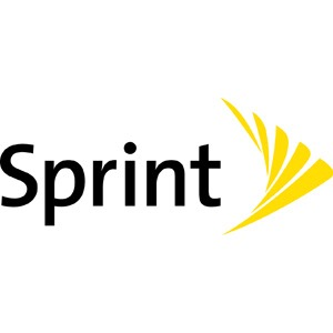 Sprint Store By Mobile Now ll Logo